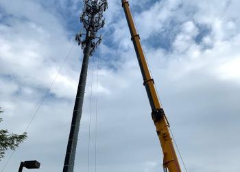 crane-18